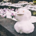 急に気分が落ち込むのは、季節や気圧が原因なのかも