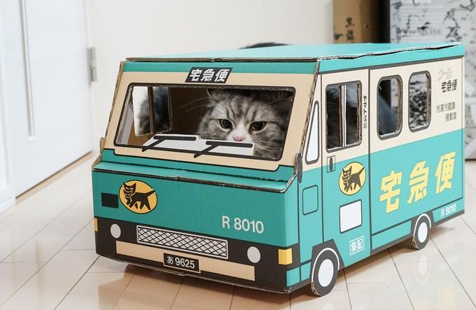 荷物を届ける猫
